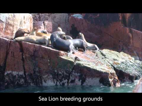 CM Tours - PERU South Coast.wmv