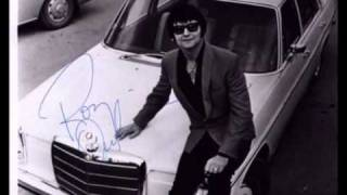 Watch Roy Orbison Born To Love Me video