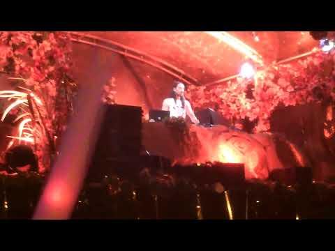 Steve Aoki, Afrojack, Tomorrowland 2013