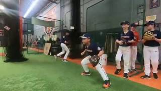 Technique Tigers Baseball Academy