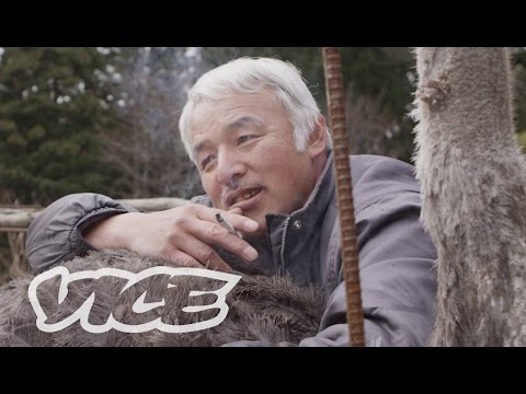 The Last Farmer in Fukushima's Post-Nuclear Wasteland: VICE INTL (Japan)