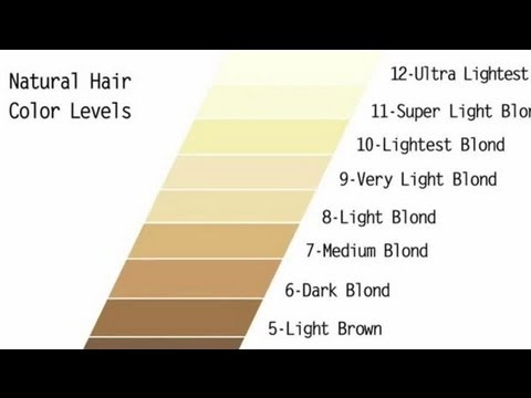 Levels Of Brown Hair Colorhair Color Levels 1 10 Chart 2017 2018