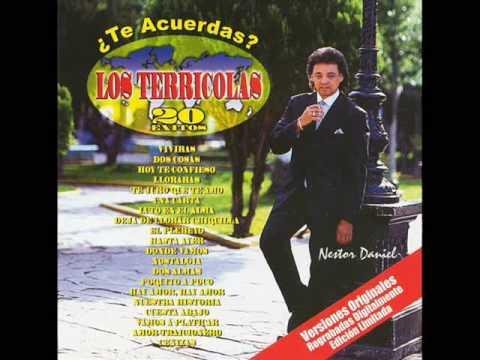 Los Terricolas - Romántico Soy