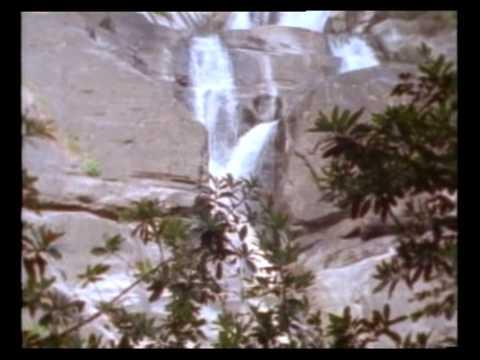 Adam&Eve - Part 1 (Hindi-Movie).avi