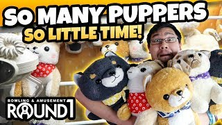 Lots of Puppers! Winning tons of prizes at Round 1 UFO Catcher!