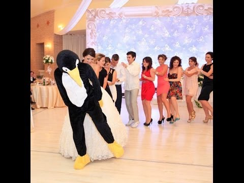 رقصة البطريق The Penguin Dance picture