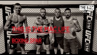 Conor McGregor boxing sparring before UFC 202 #ThisIsTheMacLife