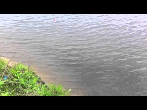 отдых и рыбалка на москве реке