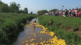 Castlethorpe Duck Race 2016