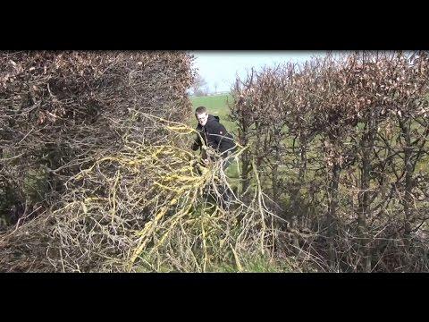 Vlog: 19.3.15  / Ab In Den Garten