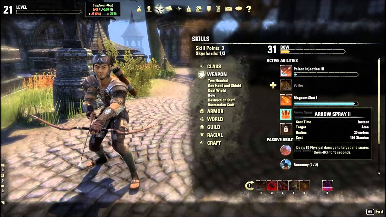 Elder Scrolls Online Stamina Nightblade Build Pvp