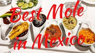 Puebla, Mexico Travel Vlog: Best Mole in Town & Bar Hopping in Cholula