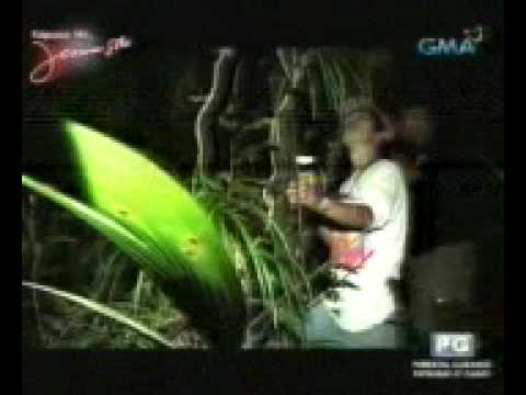 Jessica Soho Report ft. Sogod, Southern Leyte (new found species of frog)