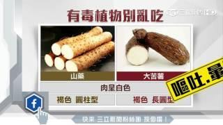 誤食「姑婆芋」中毒 徐國勇現聲報平安