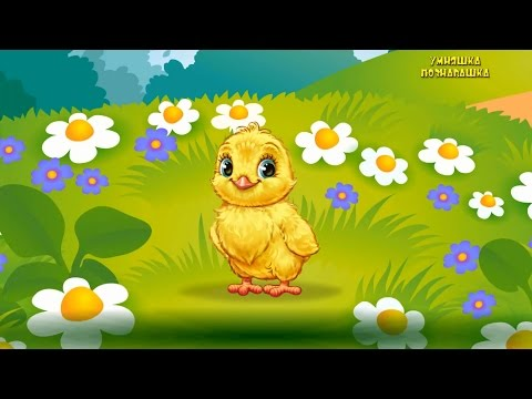 Мультфильм про животных. Названия и голоса птиц. Учим Животных для детей. Развивающий #Мультфильм
