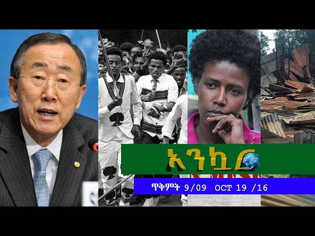 Ethiopia - Ankuar   - Ethiopian Daily News Digest | October 19, 2016