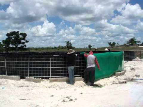 Fish farm tank s to aquaculture tangeomex youtube for Fish farm tanks