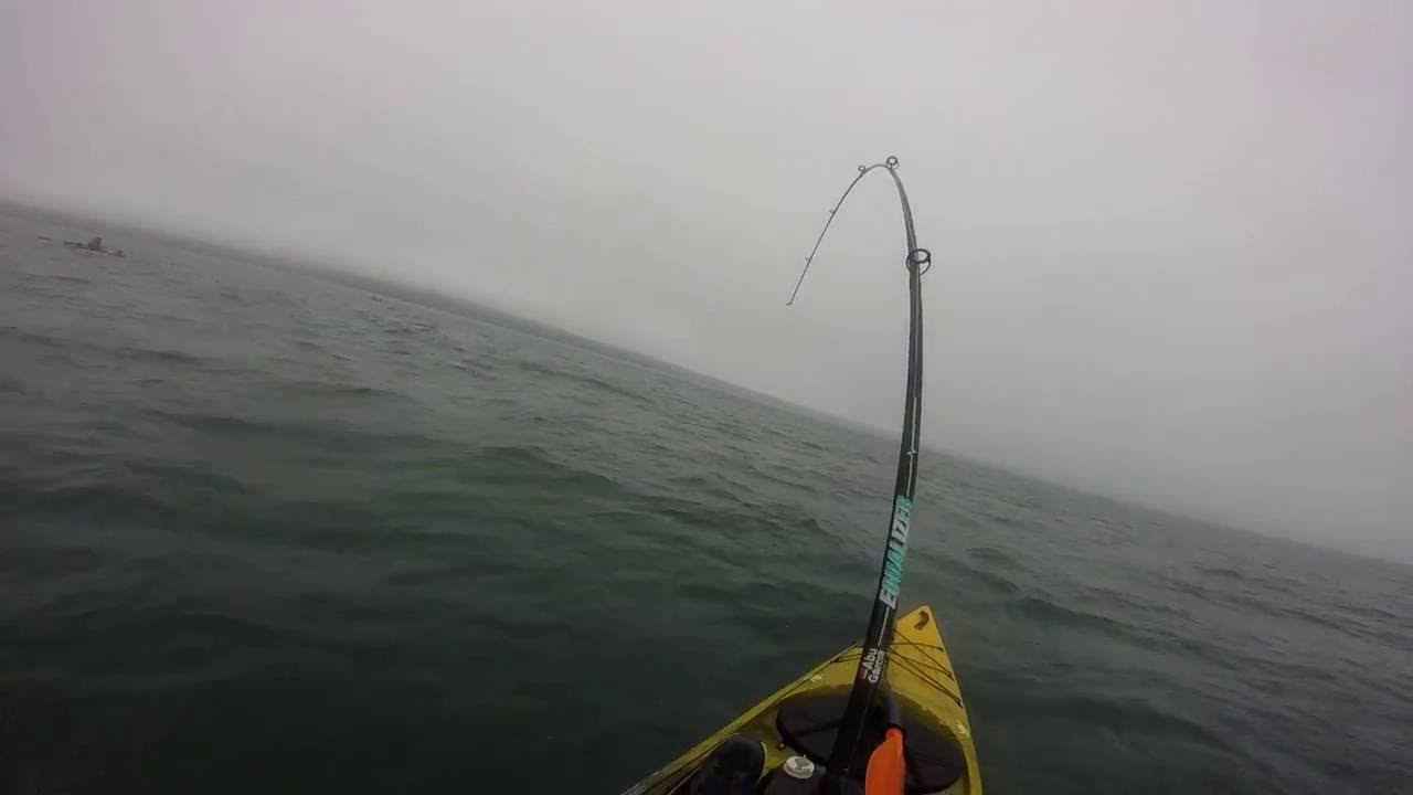 TOPE FISHING WEST WALES