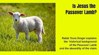 Video: Jesus became the Passover Lamb in John's Gospel, not Mark, Matthew or Luke - Tovia Singer