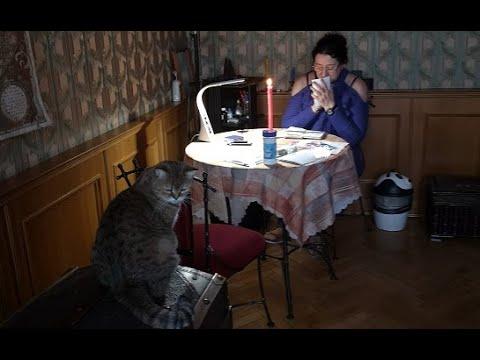 Госпожа Ната. Приворот, защита от порчи и сглаза. Телеканал