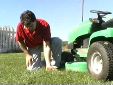 Lawn care:  Mowing high makes less work