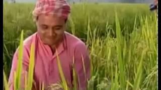 Gazi Pump Funny Bangla Dubbing I Bangla Funny Video