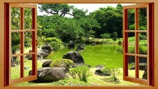 Nature Sounds: ☯ Relaxing ZEN for Yoga and Meditation