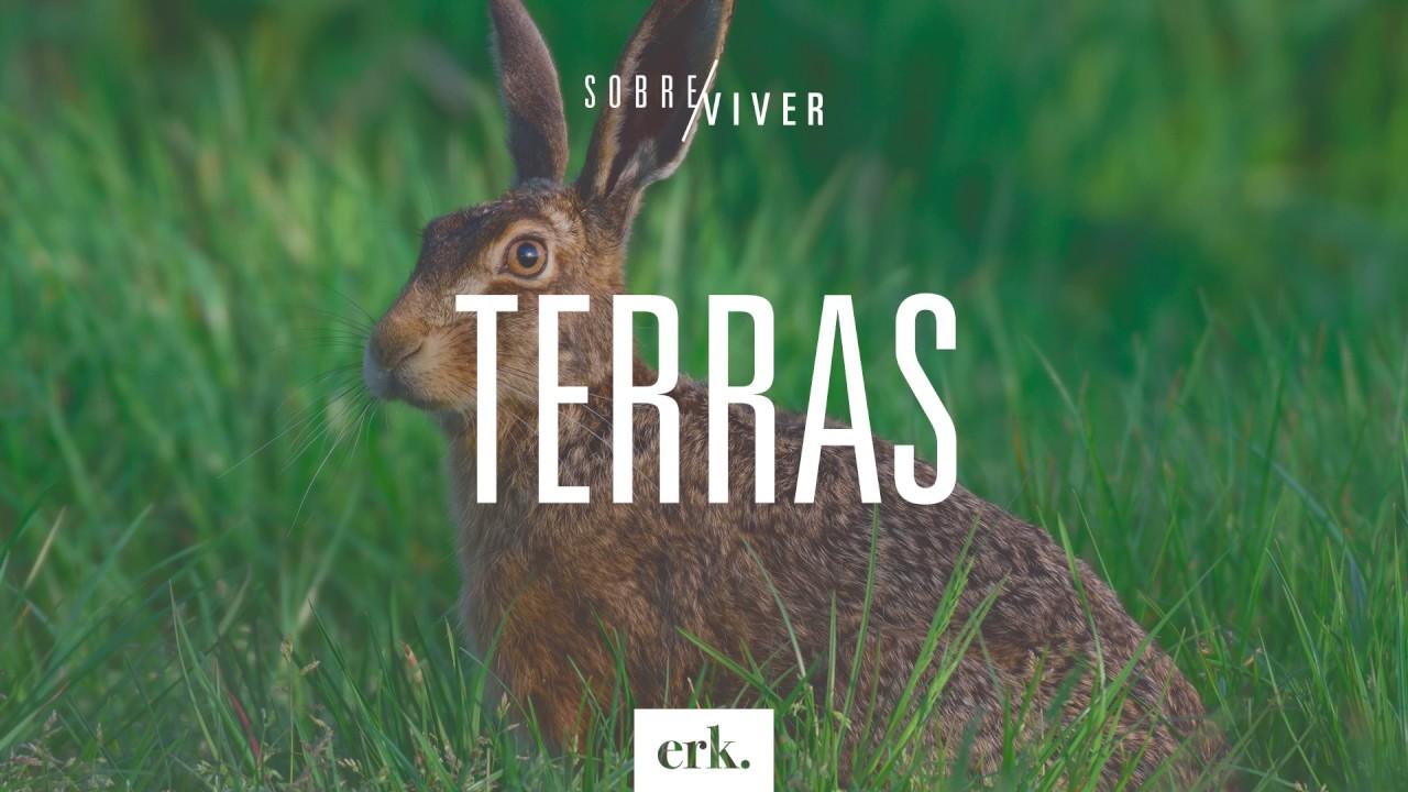 Sobre Viver #166 - Terras / Ed René Kivitz