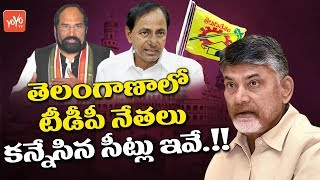Telangana TDP Leaders Hopes to Contest From These Constituencies | CM KCR
