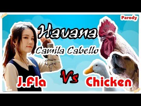 Camila Cabello   Havana   J Fla Vs Chicken Cover   Chicken Version