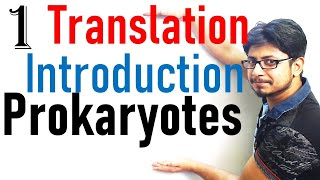 Translation in prokaryotes introduction | prokaryotic translation lecture 1