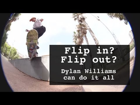Dylan Williams Til The End Highlights