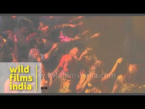 Holi festival celebrated at Banke Bihari temple - India