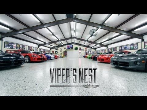 Viper's Nest | Automotive Collections | eGarage