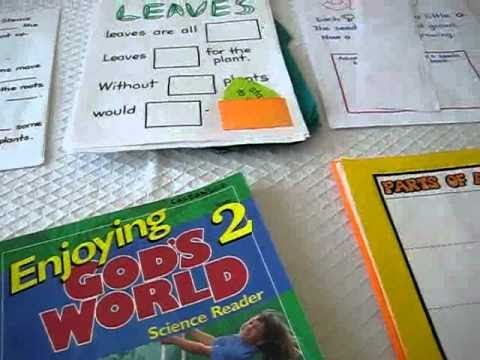 """Grade 1 - Science: Introduction to """"Plants"""" study with books, activities, worksheets and more."""
