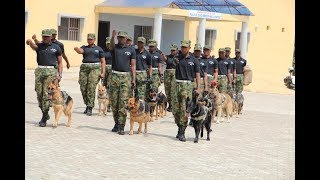 How Nigeria army train: Hilarious training of Nigeria army