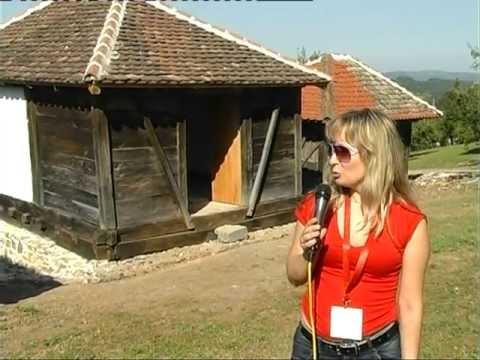 Tesmanov konak selo Bastav opstina Osecina-Obicaji Radjevine-Dobrivoje i Dobrila Pantelic