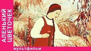 Аленький Цветочек. Советские мультфильмы. Союзмультфильм. StarMediaKids