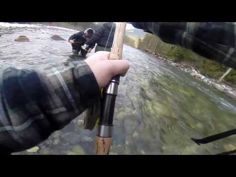 Steelhead Fishing On The Vedder River 2014