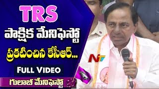 CM KCR Announces Partial TRS Manifesto Full Video | TRS Bhavan | NTV