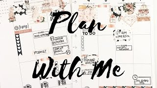 download lagu Plan With Me: May 1-7, 2017 {the Planner Society gratis