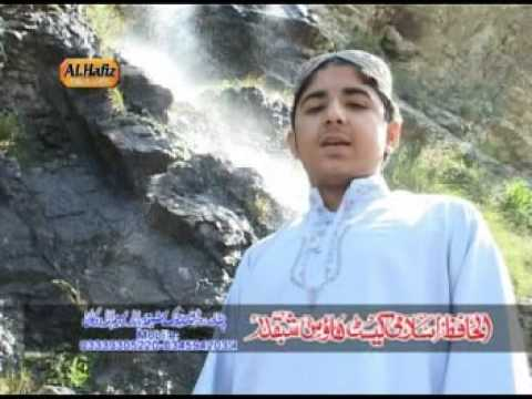 Naat Zam Ba Wartah By Hafiz Sohail Ahmad (dibatamori) video