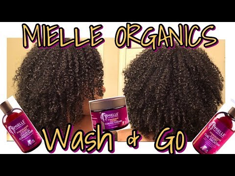 First Impressions Wash & Go + Review   The NEW Mielle Organics Pomegranate and Honey Collection