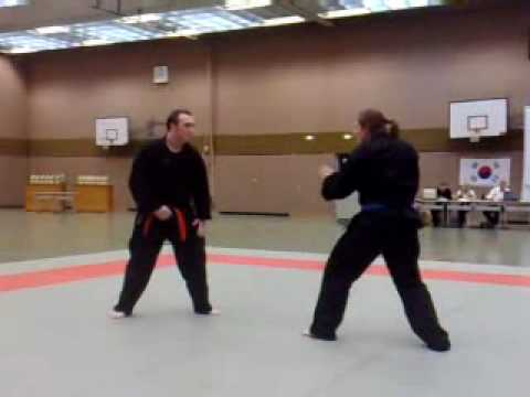 Hapkido NRW LM 2009