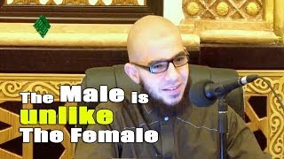 The Male is unlike The Female – Abu Mussab Wajdi Akkari