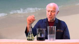 Saltwater is denser than fresh water by Doctor C