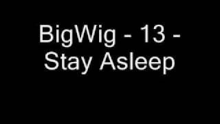 Watch Bigwig 13 video