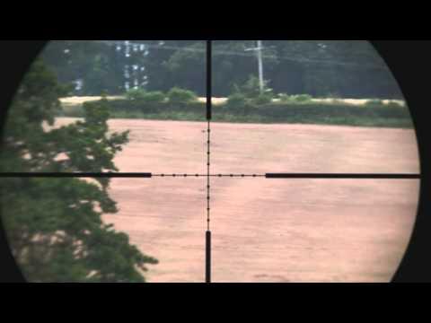 240 yard crow shot with HW100 sub 12ftlbs