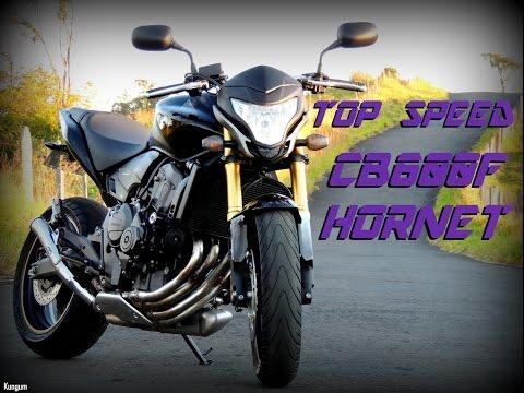 HONDA CB 600F HORNET - TOP SPEED (HD)