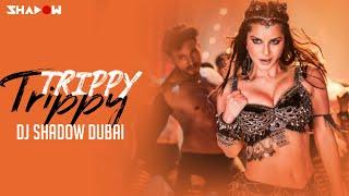 Trippy Trippy Remix | DJ Shadow Dubai | Sunny Leone | Neha Kakkar | Benny | Brijesh | Badshah
